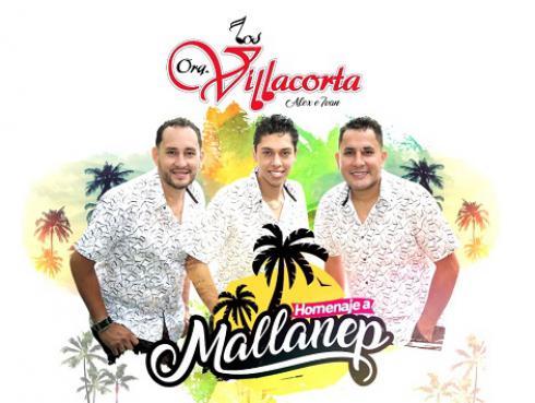 Homenaje a Mallanep